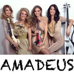 Amadeus pret nunta - organizare evenimente - sonorizare evenimente Image